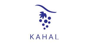 gls-_0005_LOGO_KAHAL_niebieski